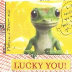 Gecko Greetings: Flotsam & Jetsam 21